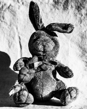 photo lost-and-found-rabbit-ny-2018.jpg Victor Demarchelier - photographies