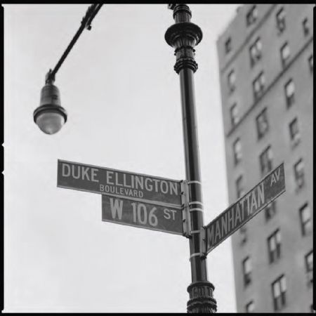 photo duke-ellington-boulevard-manhattan-new-york-2009.jpg Philippe Levy-Stab @ Château Palmer - photographies