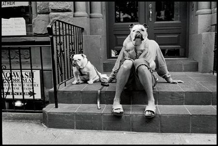 photo 023-New-York-USA-2000.jpg Elliot Erwitt - photo exhibition