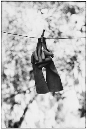 photo 033-Sicily-Italie-1965.jpg Elliot Erwitt - photo exhibition