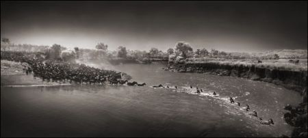 photo 050_by_Nick_Brandt.jpg Nick Brandt - Exposition Photo