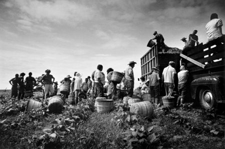 photo 024_024-Migrants-at-the-Bean-Truck.jpg Steve Schapiro - Photographies
