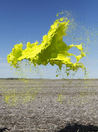 photo FLOTO WARNER_Yellow-1-Colourant-Series.jpg Davies-Aveillan-Floto - Exposition Photo