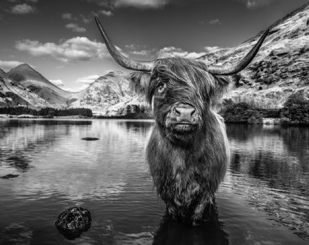 photo glen-etive.jpg David Yarrow - photographies