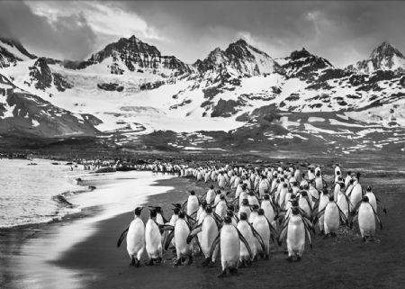 photo the-breakfast-club.jpg David Yarrow - photographies